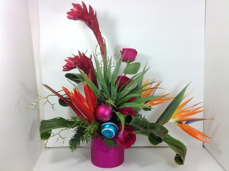 Caribbean Christmas  from Young Floral Co in Charleston, WV