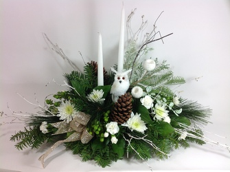 Winter Woodland  from Young Floral Co in Charleston, WV