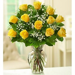 A Dozen Yellow Roses from Young Floral Co in Charleston, WV