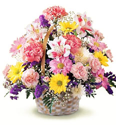 Basket Of Cheer Bouquet from Young Floral Co in Charleston, WV