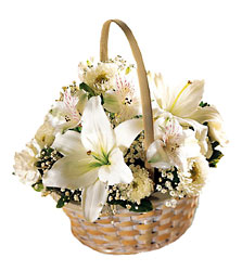 Divinity Basket from Young Floral Co in Charleston, WV