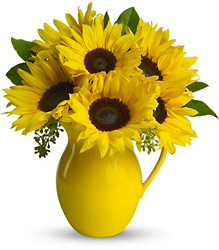 Teleflora's Sunny Day Pitcher of Sunflowers from Young Floral Co in Charleston, WV