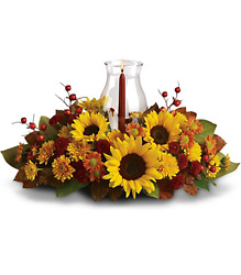Sunflower Centerpiece from Young Floral Co in Charleston, WV