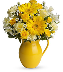 Teleflora's Sunny Day Pitcher of Cheer from Young Floral Co in Charleston, WV