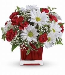 Red And White Delight by Teleflora from Young Floral Co in Charleston, WV