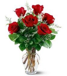 6 Red Roses from Young Floral Co in Charleston, WV