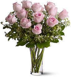 A Dozen Pink Roses from Young Floral Co in Charleston, WV