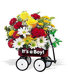 Teleflora's Baby's First Wagon from Young Floral Co in Charleston, WV
