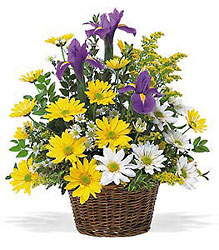Smiling Spring Basket from Young Floral Co in Charleston, WV